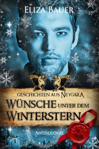 Cover Wünsche unter dem Winterstern