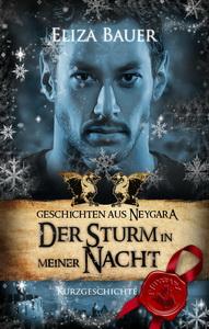 Antho_Winter_Sturm_Cover V01_191x300